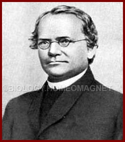 G. J. Mendel